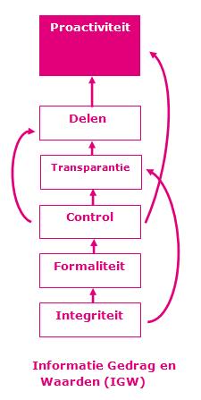 Het Informatie Oriëntatie interactie effect.